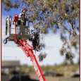 At Sonoran Tree Service we care about your trees! We strive to keep on top of the latest research and recommendations in tree care. We follow all applicable ANSI standards, […]