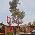 Last week we took out a massive Aleppo Pine using my lift and a 40-ton crane. The tree was pushing against the roof of the house, cracking the wall, and […]